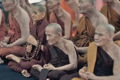people monks sitting on floor while praying human