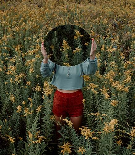 people standing woman surrounded by yellow flower field during daytime human