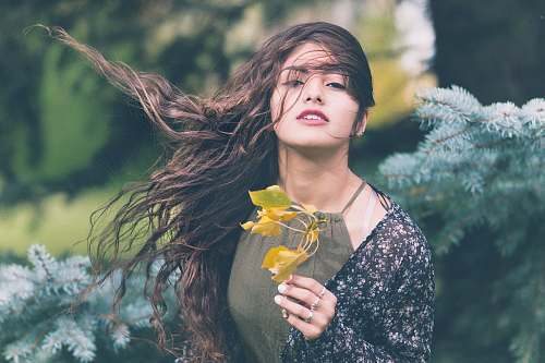 people woman holding green plant in shallow focus photography human