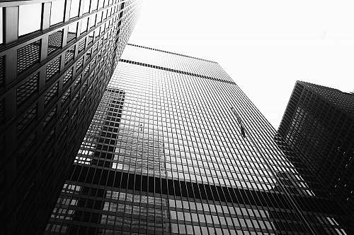 photo city grayscale photography of high rise building building free for commercial use images