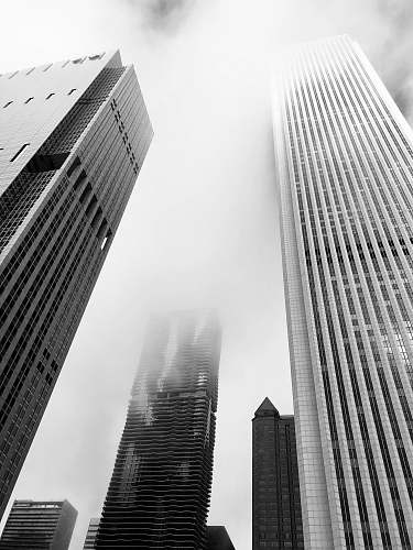 urban greyscale photography of buildings building