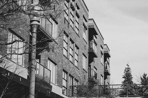 urban grayscale photo of buildings black-and-white