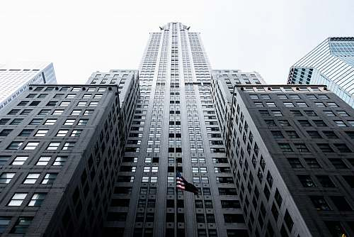 city low angle photo of gray concrete high-rise building architecture