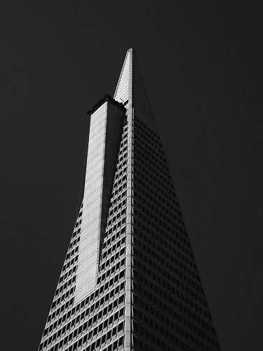 architecture worm's eye-view of building black-and-white