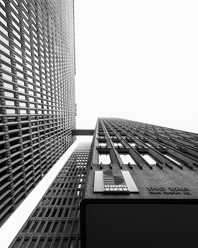 city worm's-eye view photography of buildings black-and-white