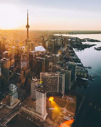 photo canada aerial photo of city during golden hour toronto free for commercial use images