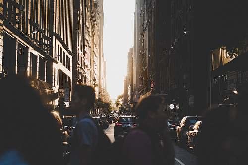 urban people crossing on pedestrian lane person