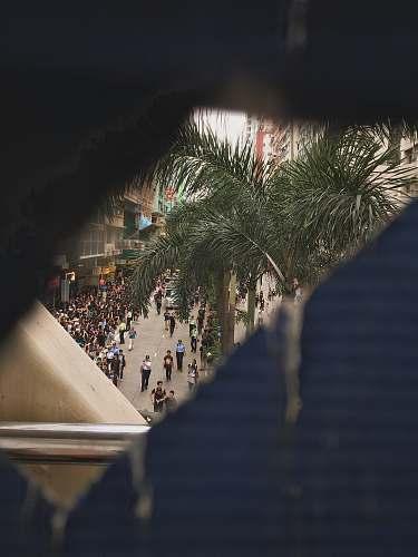 urban people walking near road beside buildings during daytime building