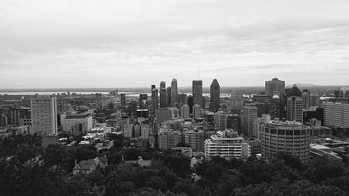 nature grayscale photography of city buildings black-and-white