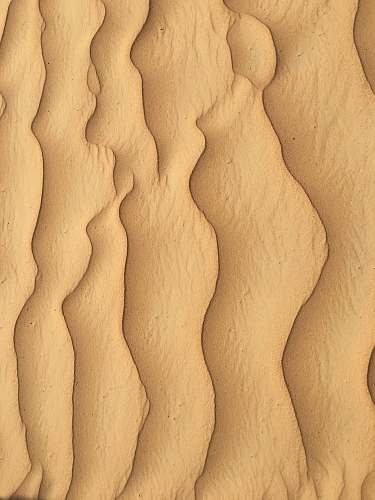 soil  sand
