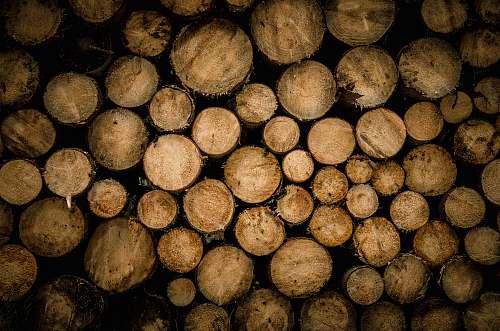 wood brown chopped logs lumber