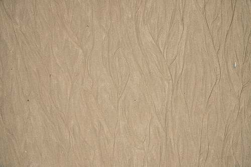 wood brown surface plywood