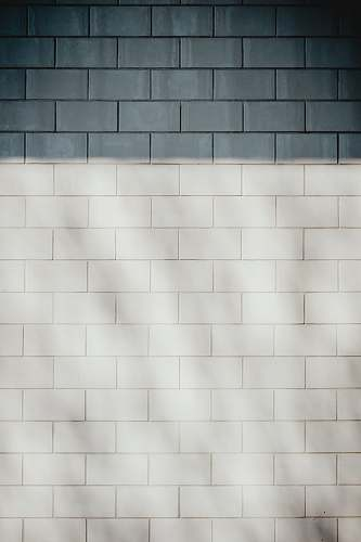 wall white brick wall background