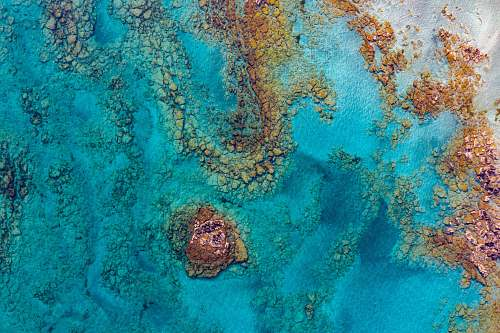 ocean aerial photography of rock formation sea life