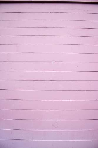 pink close shot of white wooden wall wall