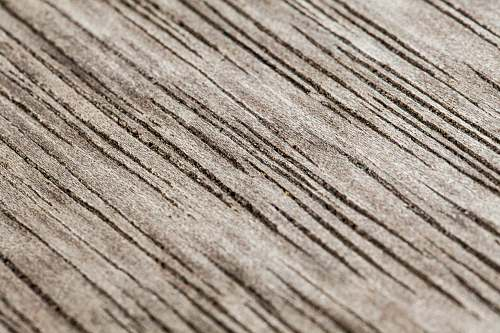 wood brown wooden surface in close up photography plywood