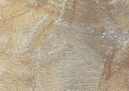 rug brown and white wooden surface nature