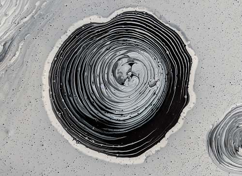 abstract grayscale photography of mud water