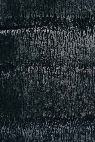 rug grayscale wood photography grey