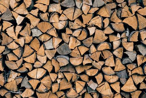 pile pile of brown firewood tree