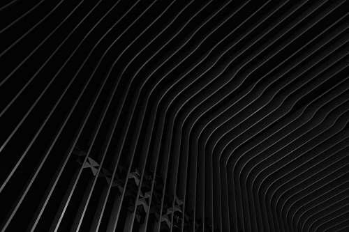 black-and-white white and black stripe dress shirt black