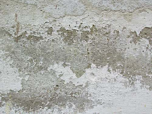 grey white and brown area rug concrete