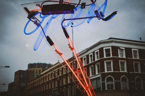 bird time lapse photography of red and blue lights strap
