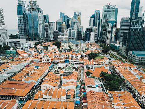 city aerial view of houses architecture