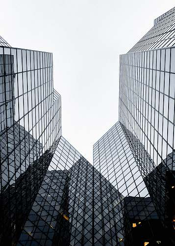 city architectural photography of glass buildings architecture