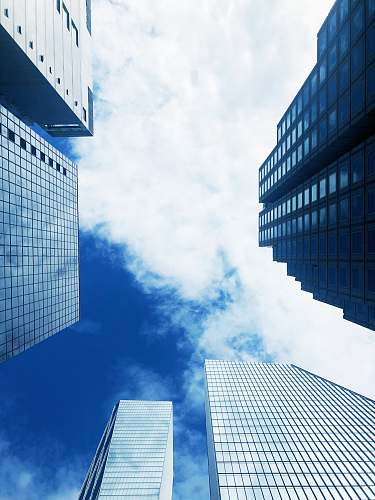 city worm's eye view photography of building under blue sky during daytime architecture