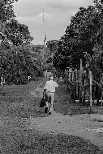 nature man walking beside fence near trees black-and-white