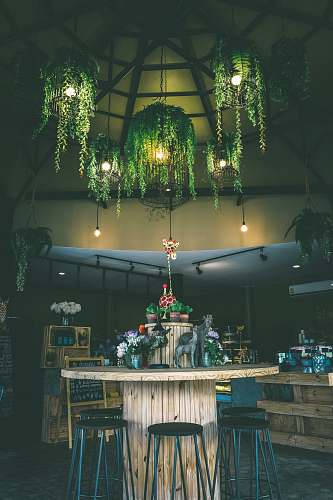 room round brown wooden table surrounded by black stools under green leafed-themed pendant lamps lighting