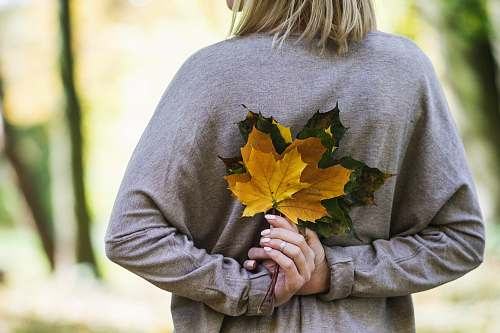 leaves woman holding yellow and gray leaves during daytime autumn