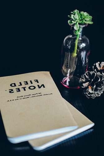 glass Field Notes books memo