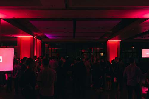 human people inside club club