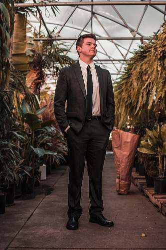 suit man wearing suit jacket standing between the plants human
