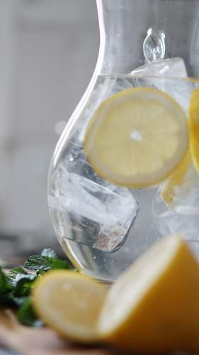photo lemonade sliced lemon inside pitcher with ice cubes drink free for commercial use images