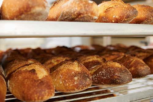food baked breads bun