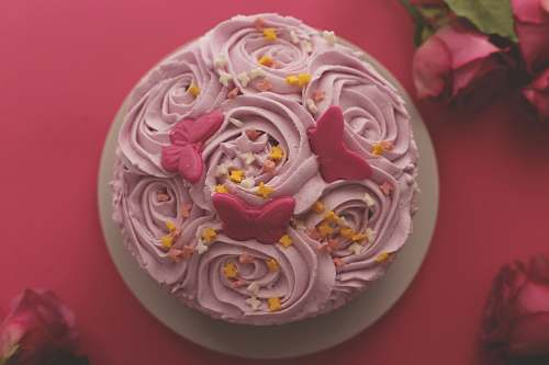 dessert flat-lat photography of pink-icing colored rosette cake cream