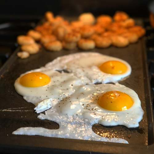 food eggs on griddle 256 mountain view ave
