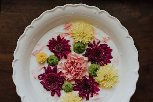 meal assorted flower decor dish