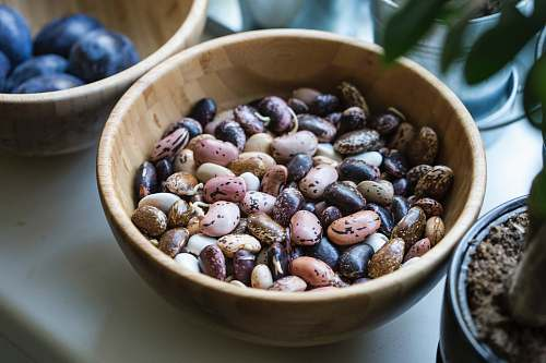 plant assorted pebbles bowl