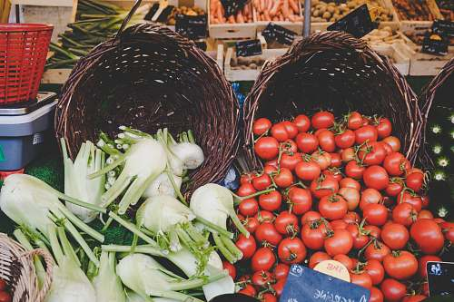 vegetable basket of tomatoes and vegetables tomato