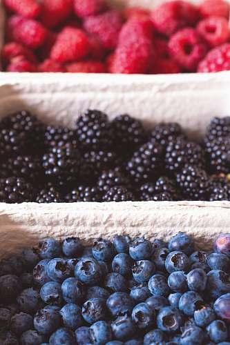 raspberry berries lot fruit