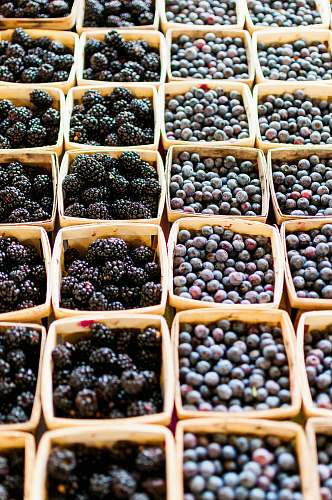 fruit blackberry and blueberry fruits blueberry