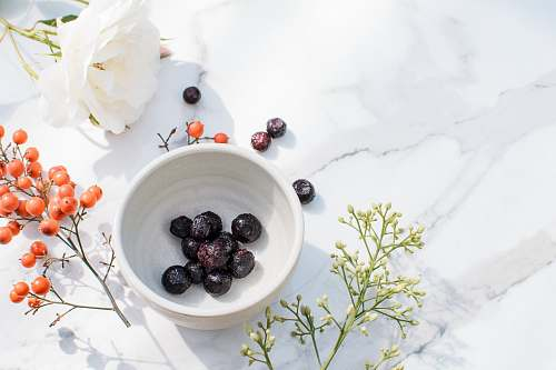 plant blue berries on white ceramic bowl blueberry