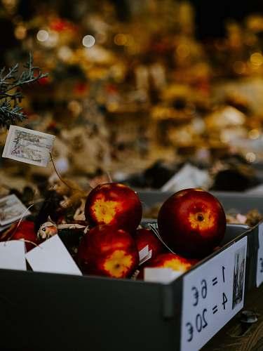fruit box of apples plant