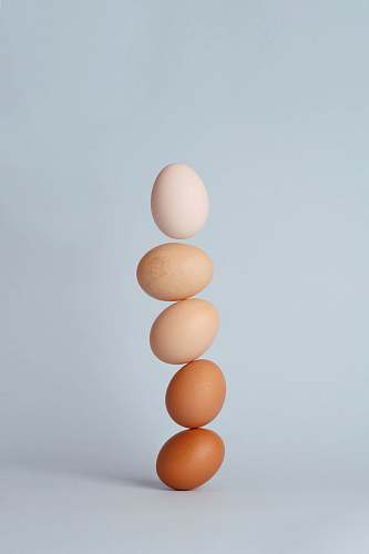 photo egg brown and white eggs balance free for commercial use images