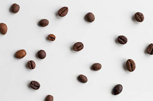 bean brown coffee bean lot flora