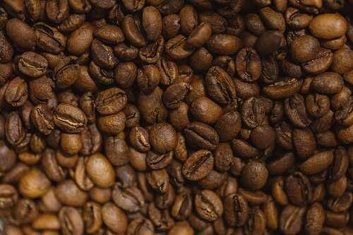 flora brown coffee beans bean
